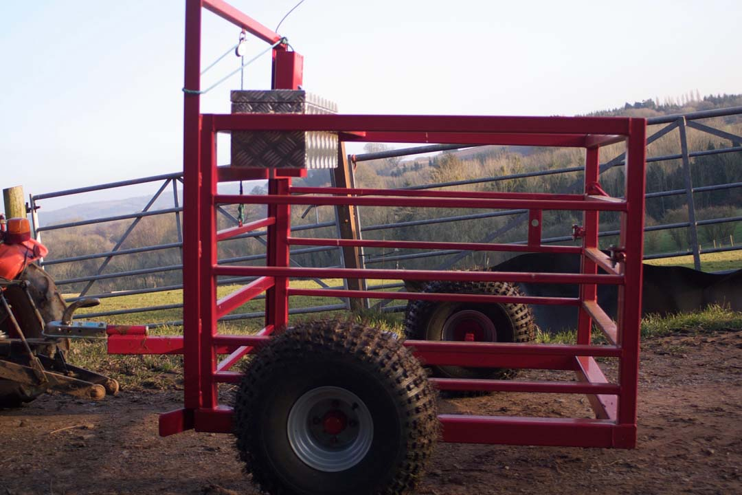 For Sale Calf Catcher from D&J Smith